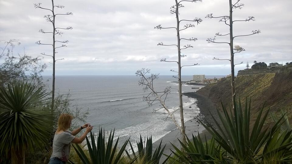 Šiaurinis krantas pasitiko chopu, nors iš toli atrodo gerai.